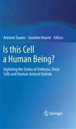 Is This Cell a Human Being?  Exploring the Status of Embryos, Stem Cells and Human-Animal Hybrids